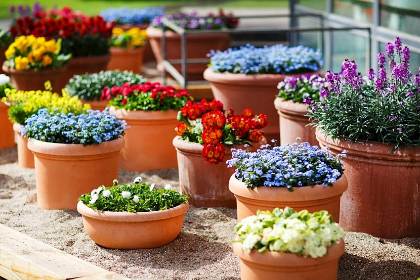 Květináče zakoupíte v různých velikostech i tvarech