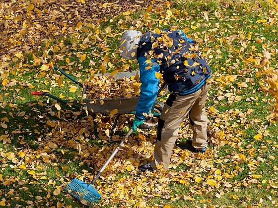 Buďte na podzim připraveni, na zahradu se pořádně oblékněte (Zdroj: Depositphotos)