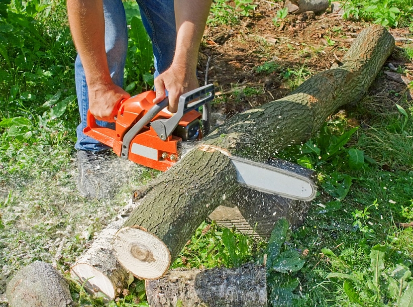 Pro přípravu dřeva na zimu či péči o stromy v zahradě nebo v lese je nepostradatelným zahradním strojem motorová pila