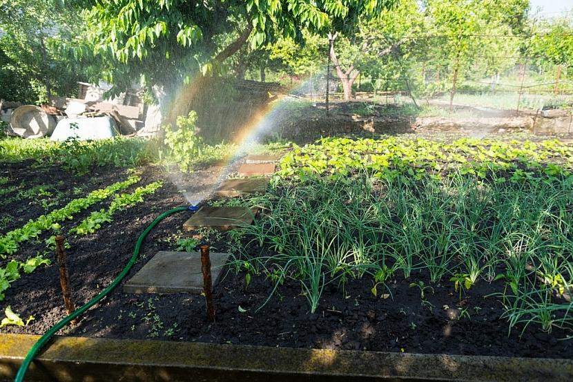 K závlahám lze připojit i dávkování hnojiva, což je vhodné tam, kde chybí živiny