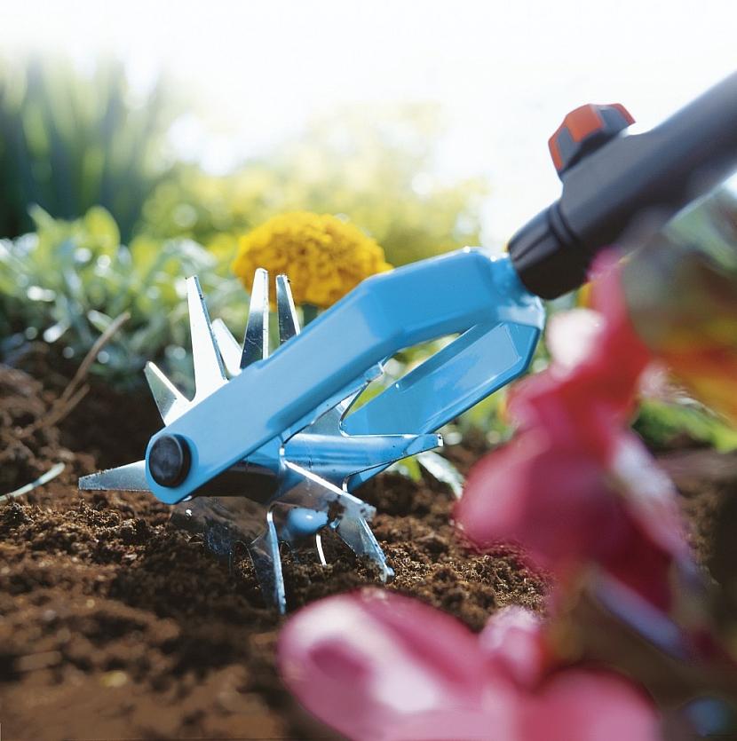 Nepromeškejte výsadbu trvalek a dejte sbohem plevelu
