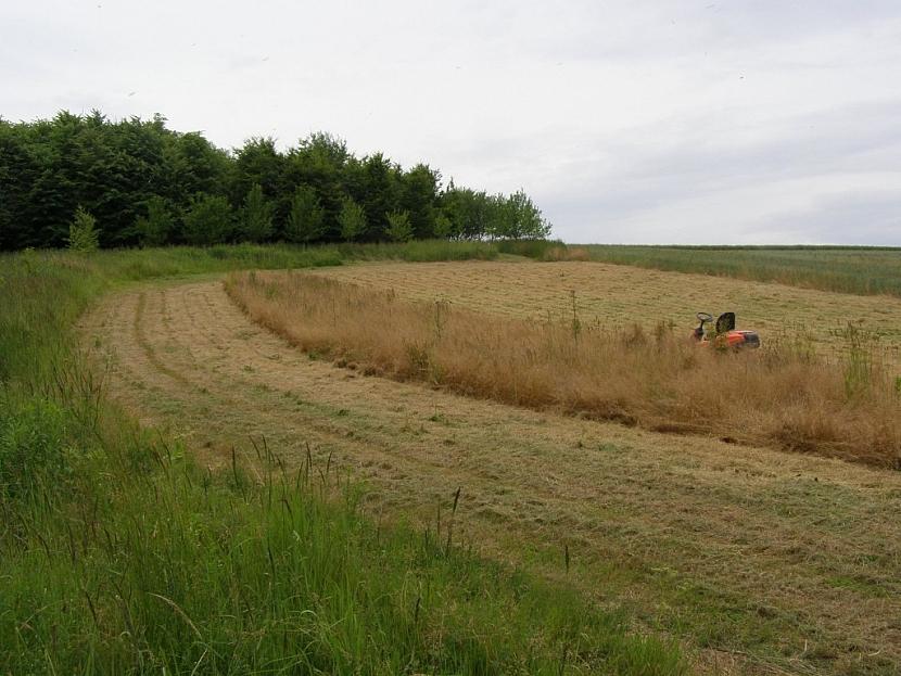Traktor je výkonným a spolehlivým strojem na opravdu rozsáhlé plochy