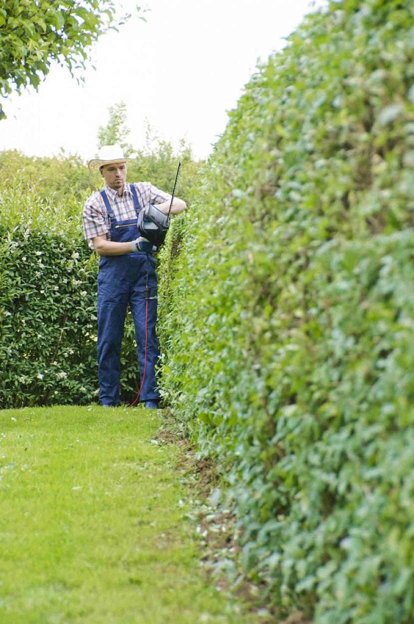 V malé zahradě a s menšími plochami k úpravě si určitě vystačíte s elektrickými nůžkami, pro větší plochy volte benzínové