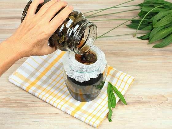 Lahodný jitrocelový sirup pomáhá při kašli, zahlenění, zánětu průdušek i plic (Zdroj: Depositphotos)