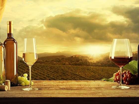 Češi a Moravané mají víno rádi a dávají přednost tomu, které uzrálo na domácích vinicích (Zdroj: Depositphotos)