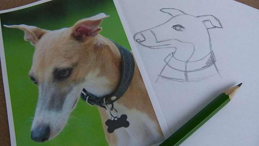 Vyšívaná brož z plsti podle fotografie rodinného mazlíčka: nakreslete předlohu