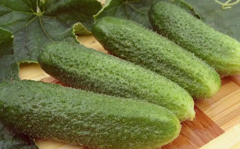 Zelené okurky