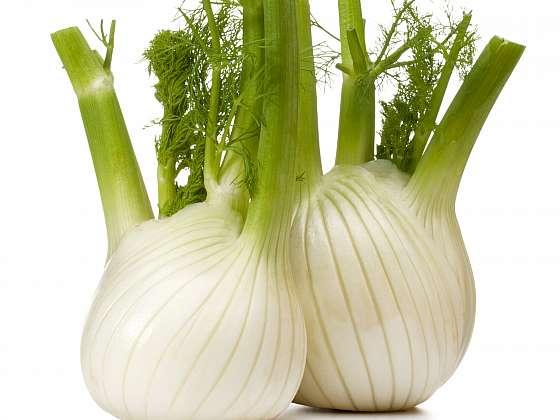 Fenykl sladký je blahodárná zelenina pro žaludek (Zdroj: Depositphotos)