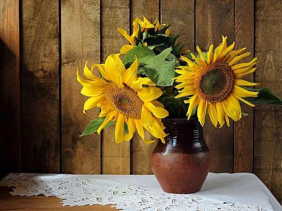 Co dělat, aby vám slunečnice déle vydržely ve váze? (Zdroj: Depositphotos)