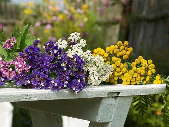 Nasušte si květiny pro tvorbu květinových aranžmá (Zdroj: Petra Hajská)