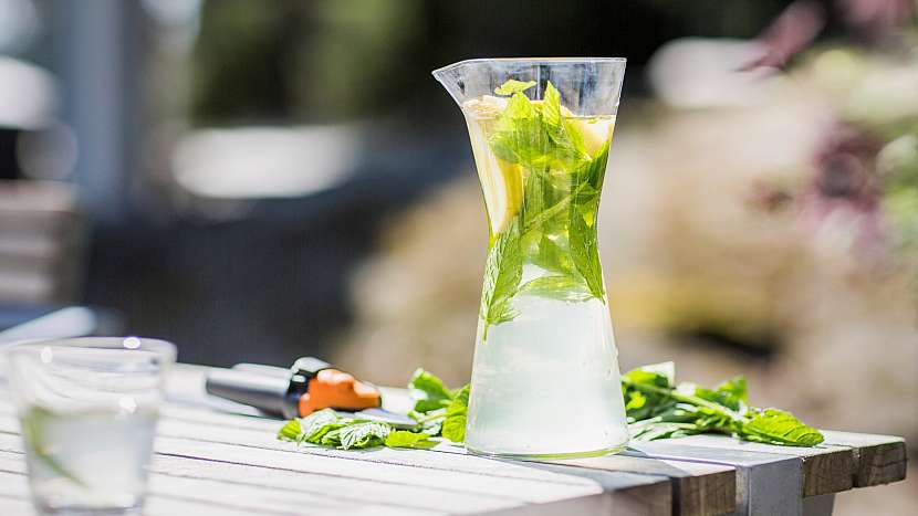 Domácí limonáda: stačí kvalitní sirup, perlivá voda a snítka máty