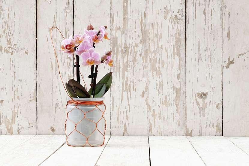 Drátovaný závěs na květináč