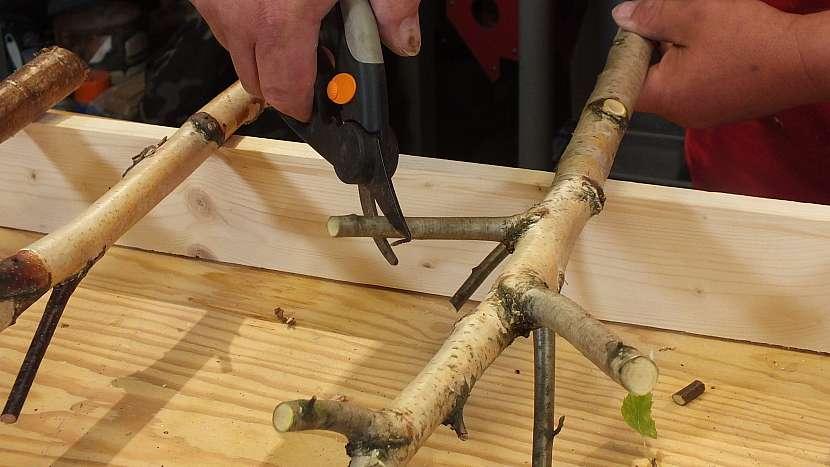 Věšák z větví: připravíme si březové větve