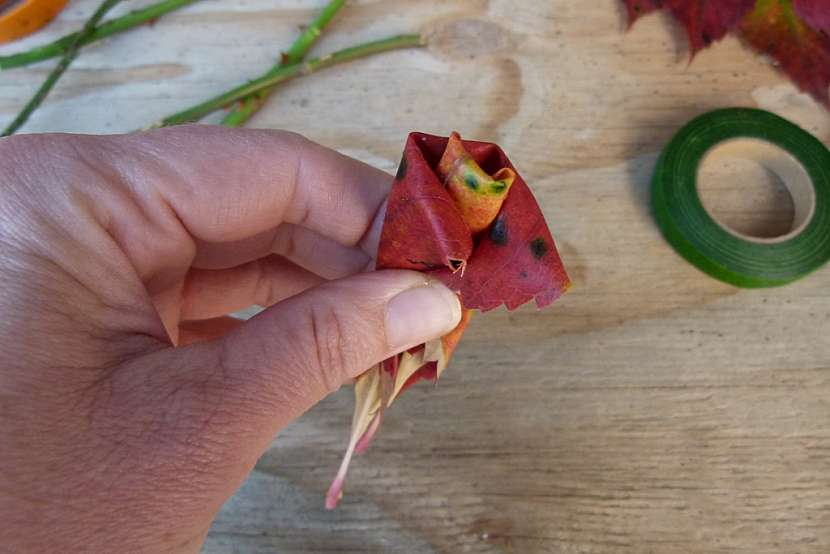 Růže z barevného podzimního listí: obtočte list