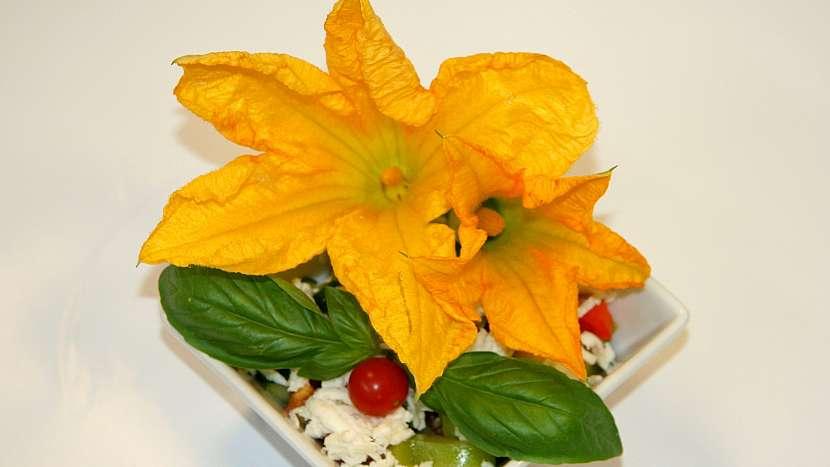Sezona cuket: s květy pracujte při teplotě 1-4 °C