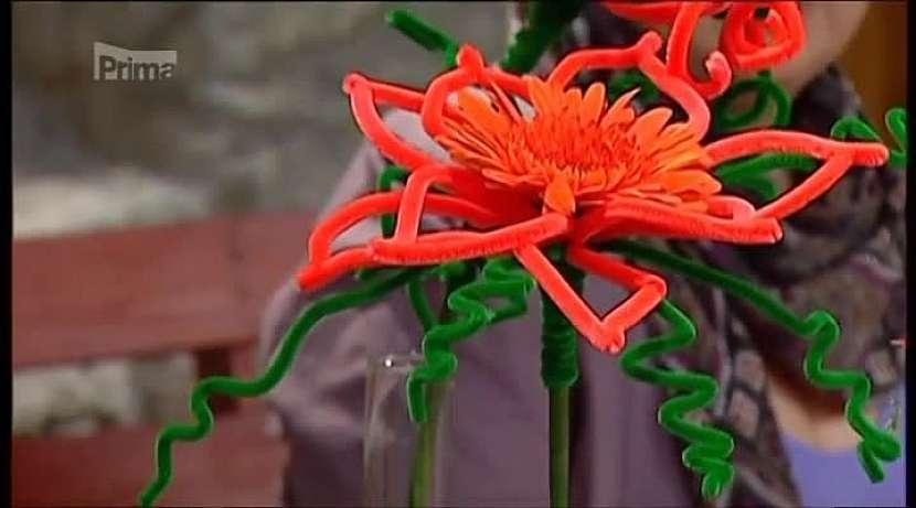 Crazy květina
