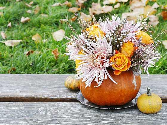 Podzimní květinovou vazbu  z chryzantém a dýně můžeme umístit i venku na terase (Zdroj: Depositphotos)