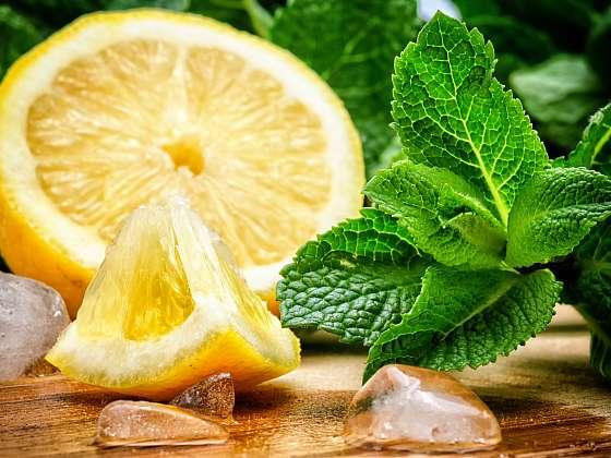 Vyrobte si chutný léčivý mátový sirup (Zdroj: Depositphotos (https://cz.depositphotos.com))
