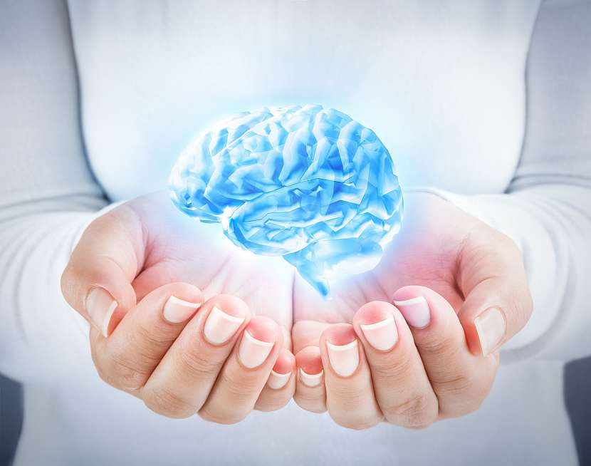 Pupečník pomůže hlavně vašemu mozku