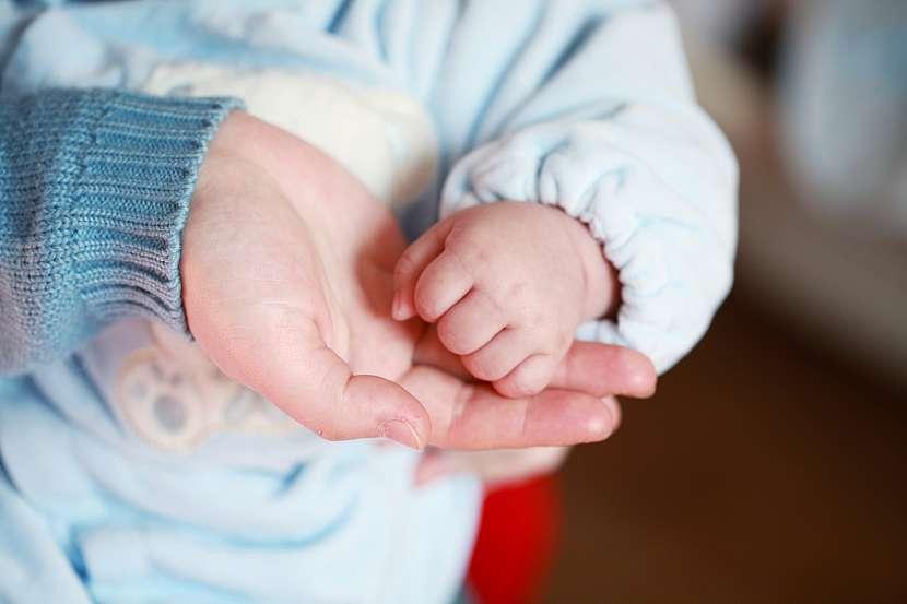 Malá pěstička, velká dlaň