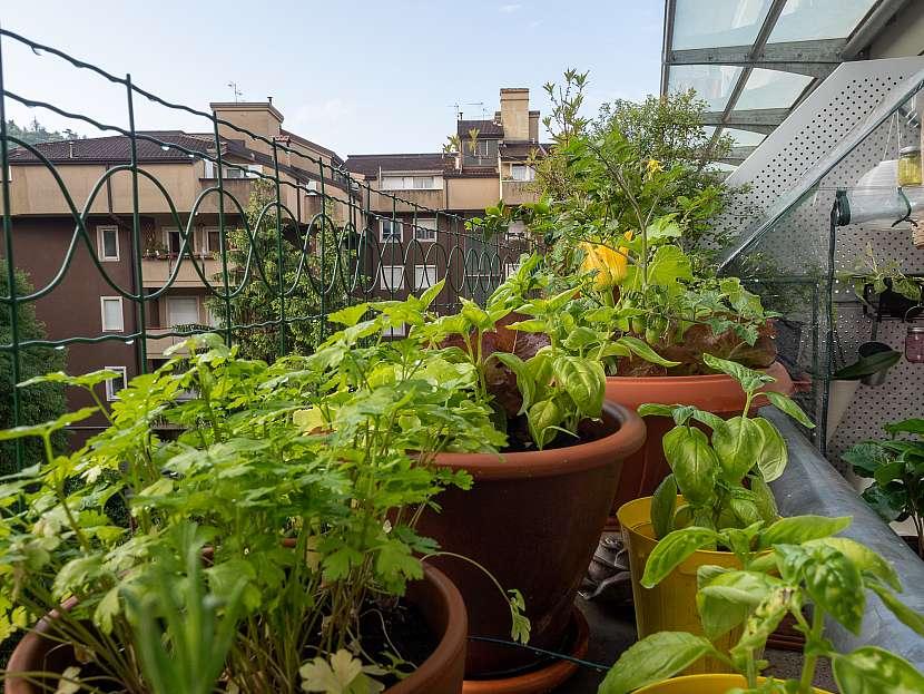 Květníky na balkoně