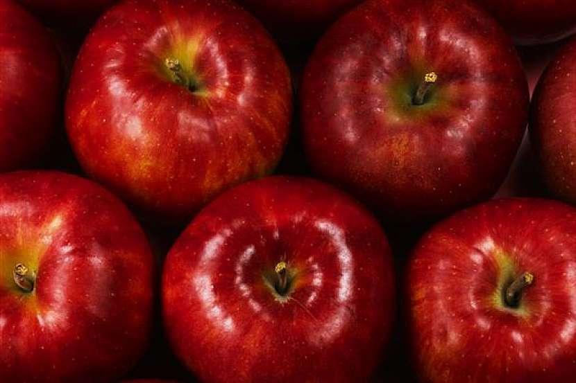 Kam na výlet: Jablka a jablečné speciality můžete 1