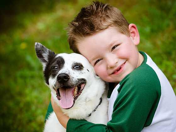 Děti a psi spolu prožívají krásné chvíle (Zdroj: Depositphotos)
