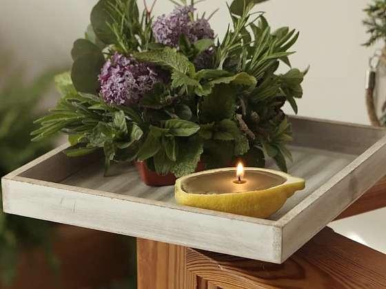 Výroba svíčky z včelího vosku s bylinkovým aranžmá (Zdroj: Prima DOMA MEDIA, s.r.o.)