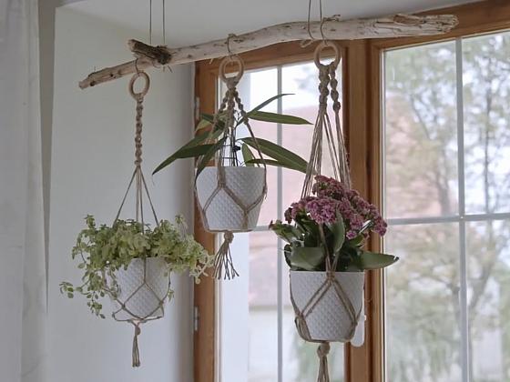 Vyrobte si originální macramé závěs na květináč (Zdroj: Prima DOMA MEDIA, s.r.o.)