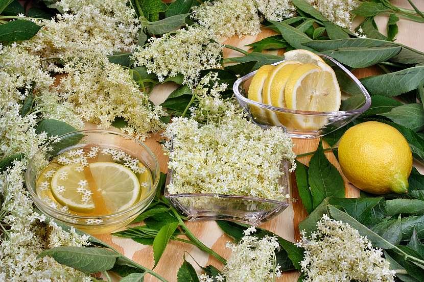 Bezové květy, citron
