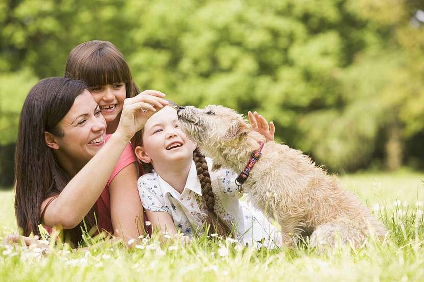 Rodina se psem v trávě
