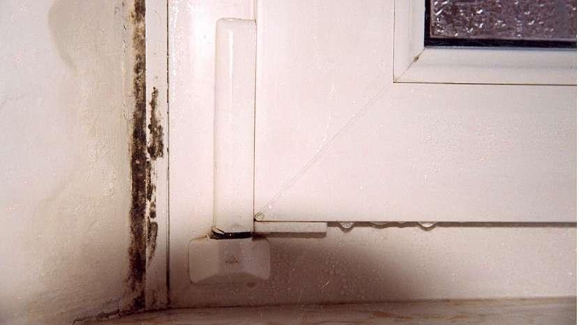 Jak zabránit rosení oken: projev kondenzace vzdušné vlhkosti na rámu okna a navazujícího ostění – vznik plísně