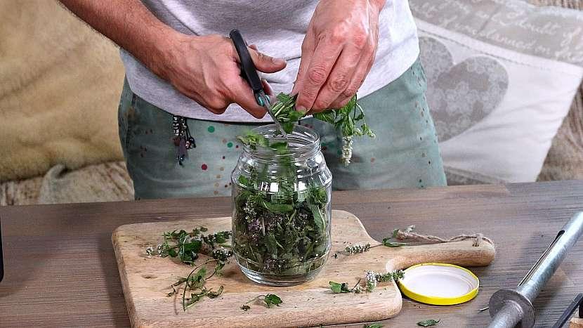 Domácí mátový olej: mátu nasekáme nebo nastříháme