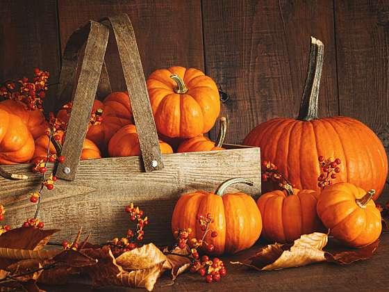 Jaké svátky slavíme v listopadu?  (Zdroj: Depositphotos)