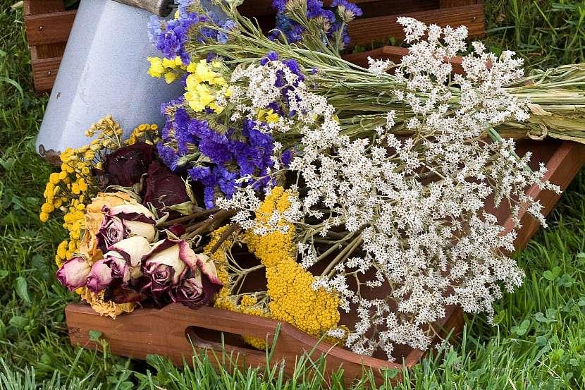 Sušené květiny na tácu