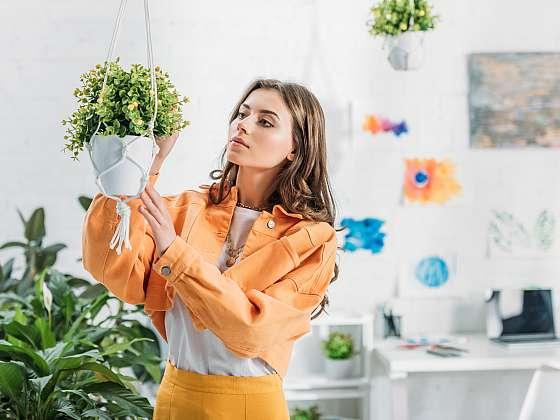 Máte málo prostoru pro pokojové rostliny? Váš problém může vyřešit jejich zavěšení (Zdroj: Depositphotos (https://cz.depositphotos.com))