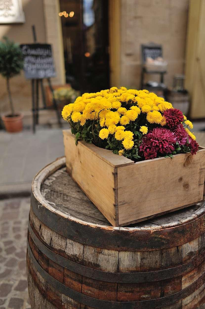 Zeleninová bednička s rozkvetlými chryzantémami je opravdu pěknou dekorací
