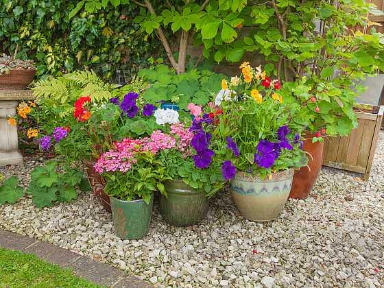Keramické nádoby dodají venkovnímu zátiší zajímavou atmosféru  (Zdroj: Depositphotos)