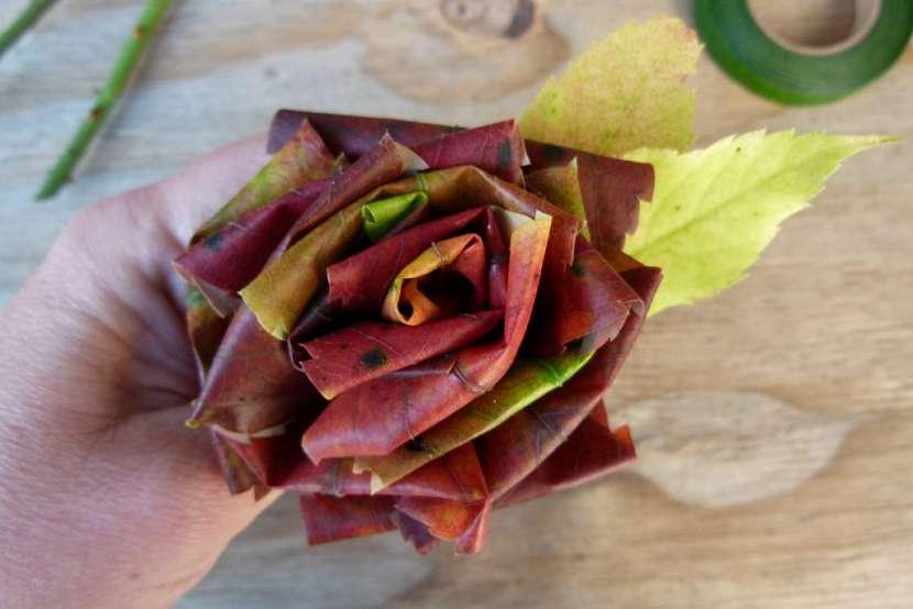 Růže z barevného podzimního listí: celý květ
