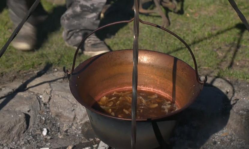 Vaření hub
