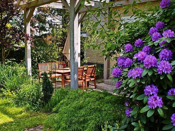 Terasu kryje krásná robustní pergola, která pomáhá vytvářet v létě stín (Zdroj: Depositphotos (https://cz.depositphotos.com))