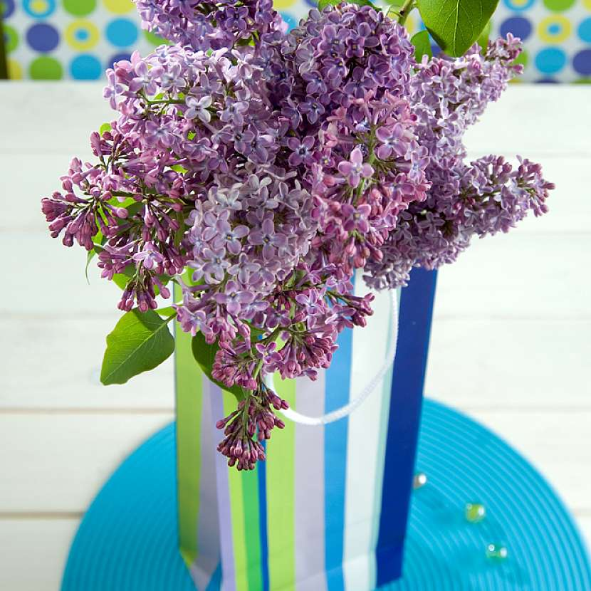 Jak potěšit maminku dekoracemi inspirovanými šeříkem: Papírová váza