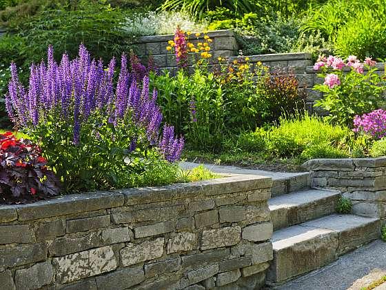 Kvetoucí zahrada je sen každého milovníka květin. Když vyberete správnou zeminu, budete ji mít i vy (Zdroj: Depositphotos (https://cz.depositphotos.com))