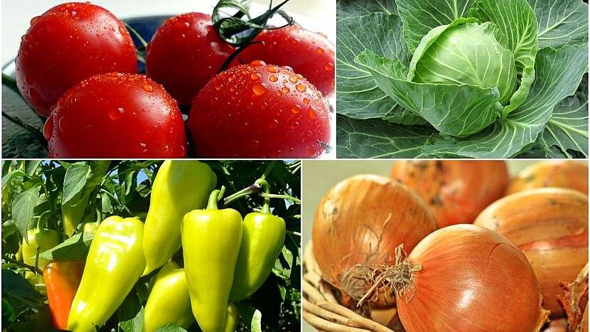 Do čalamády se hodí různé druhy zeleniny, ale hlavně cibule, papriky, rajčata a hlávkové zelí