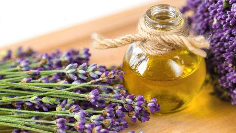 Levandule lékařská (Lavandula angustifolia): domácí olej má mj. protizánětlivé účinky