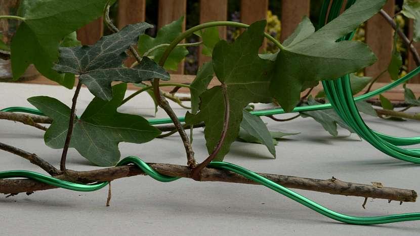 Jak udělat romantickou lucernu: břečťan omotejte drátem