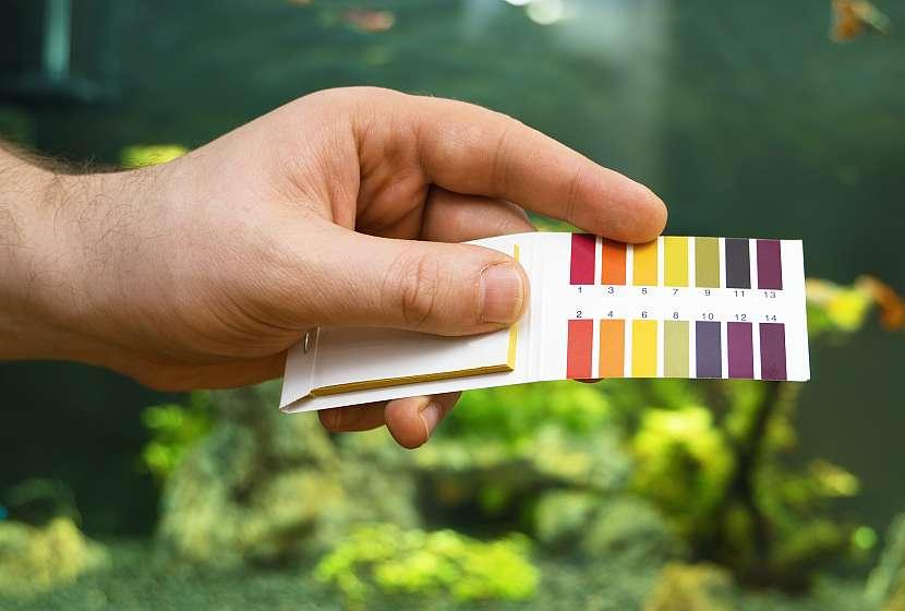 Dodržujte správné pH a teplotu vody