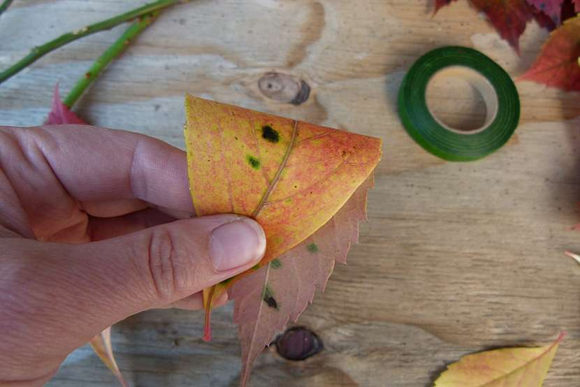 Růže z barevného podzimního listí: list přeložte