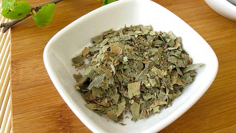 Bříza bělokorá: ze sušených listů se připravuje diuretický čaj