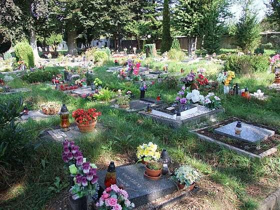 Připomeňte si památku zesnulých (Zdroj: Pavlína Wagnerová Málková)
